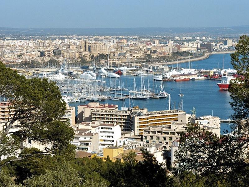 Изображение вид на порт города Пальма де Майорка