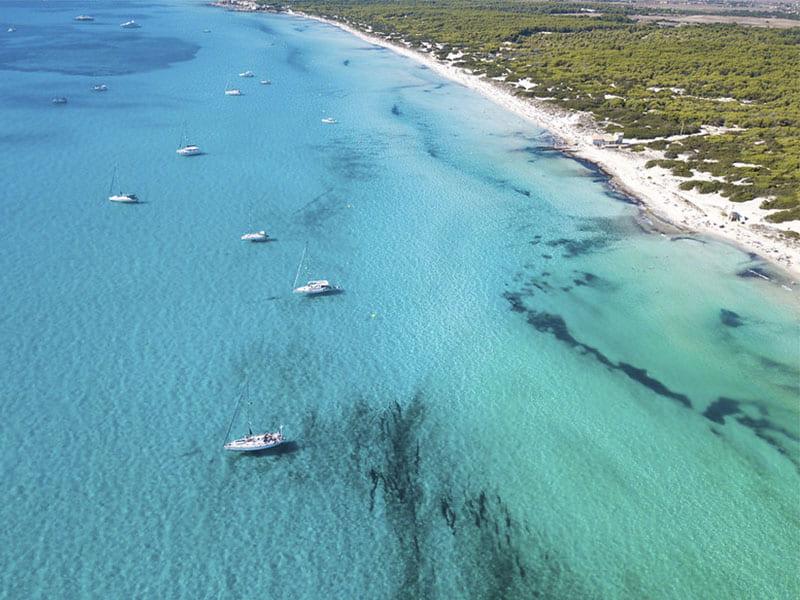 Изображение Лучший нудистский пляж Майорки Эс Тренк